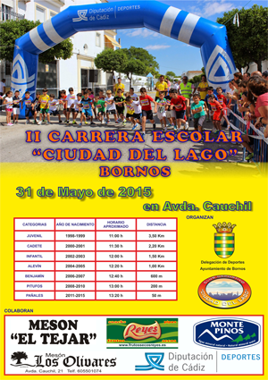 Cartel II Carrera Escolar web