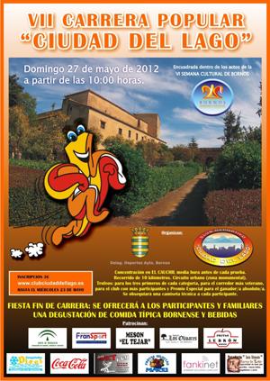 Cartel VII Carrera Popular